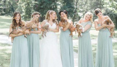 puppy bridesmaids
