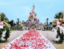 Disneyland paris wedding